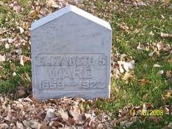 "Elizabeth ""Lizzie"" <I>Stewart</I> Ward"