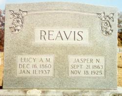 Lucy Ann Matilda <I>Anderson</I> Reavis