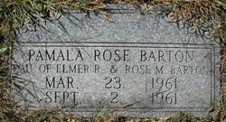 Pamela Rose Barton