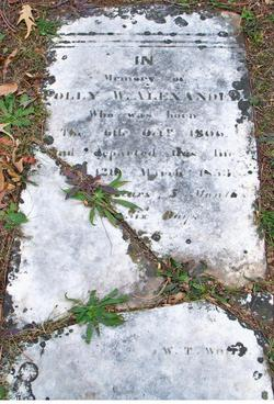 "Mary Ann ""Polly"" <I>Foster</I> Alexander"