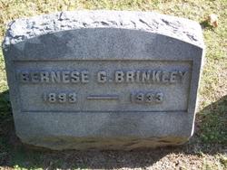 Bernese <I>Gregory</I> Brinkley