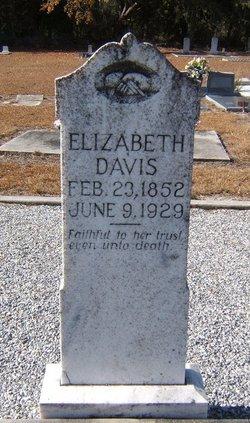 """Elizabeth """"Lizzie"""" <I>Chancey</I> Davis"""