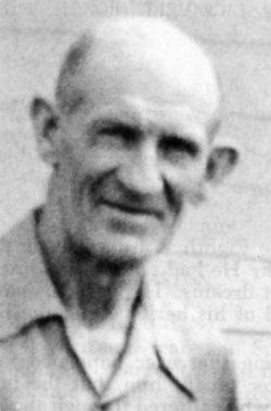 Norman Everett Stauffer