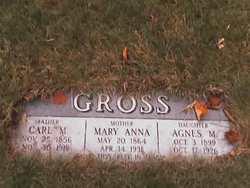 Carl M Gross