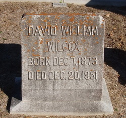 David William Wilcox
