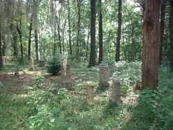 Boykin Cemetery