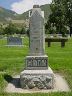 Henry Moon