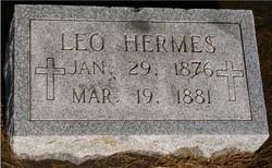 Leo M. Hermes