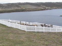 Port Howard Cemetery (Falklands)