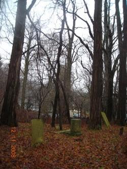 Emigh-Grant Path Cemetery