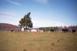 Samuel P. Rakes Cemetery