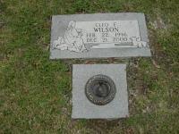 Cleo Edison Wilson