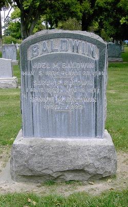 Joel Manning Baldwin
