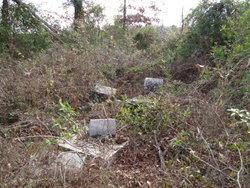 DeJarnette Cemetery #2