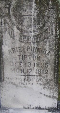 Arie Pinknia <I>Moore</I> Tipton
