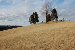 Curtis Ridge Cemetery