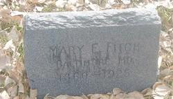 Mary E Fitch