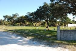 Grant Street Cemetery