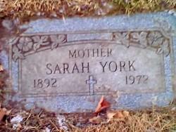 Sarah York