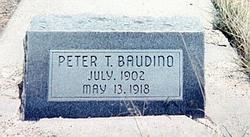Peter Tony Baudino