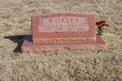 Joel Marion Worley
