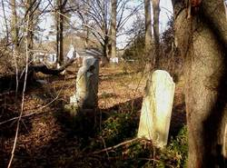 Eckles-Madison Family Cemetery