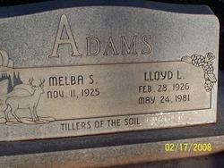 Lloyd Lee Adams