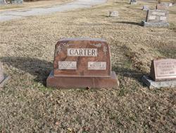 Ester Ann <I>Endicott</I> Carter