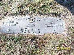 Irene E Bellis