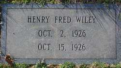 Henry Fred Wiley