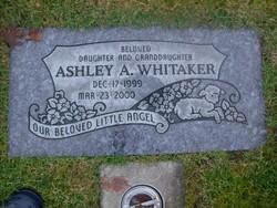 Ashley A Whitaker
