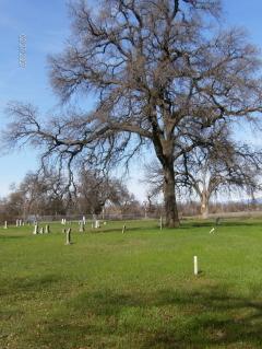 Anderson Pioneer Cemetery