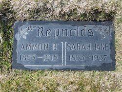 Ammon Brown Reynolds