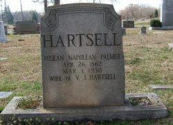 Roseann Napolean <I>Palmer</I> Hartsell