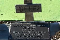 Harold S Bruchman