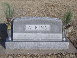 Henry Gardner Atkins