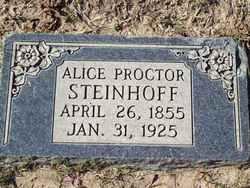 Alice Ellen <I>Proctor</I> Steinhoff