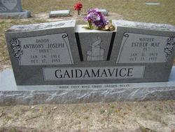 "Anthony Joseph ""Tony"" Gaidamavice"
