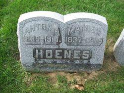 Mathew Hoenes