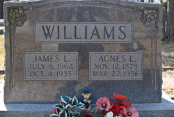Agnes L. <I>Riley</I> Williams