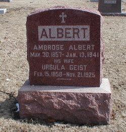 Ambrose Albert