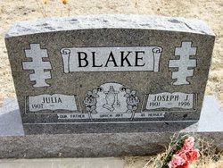 Joseph J Blake