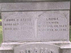 Louisa <I>Hoyt</I> Adams