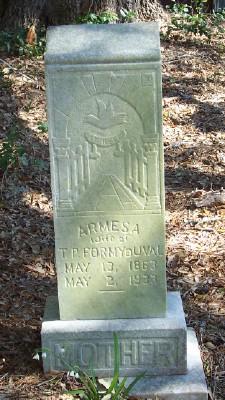 Armesia Persa <I>Simmons</I> Formy-Duval