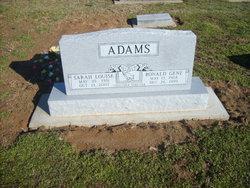 Sarah Louise <I>Ginter</I> Adams