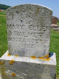 Mary Ellen Palmer