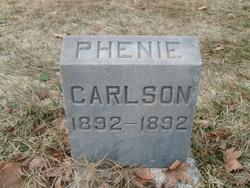 Phenie Carlson