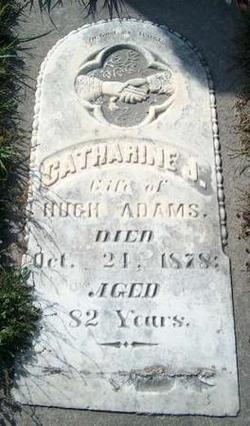 Catherine J Adams