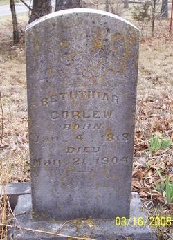 Beththiar <I>Bird</I> Corlew