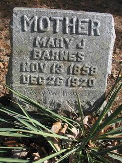 Mary J Barnes